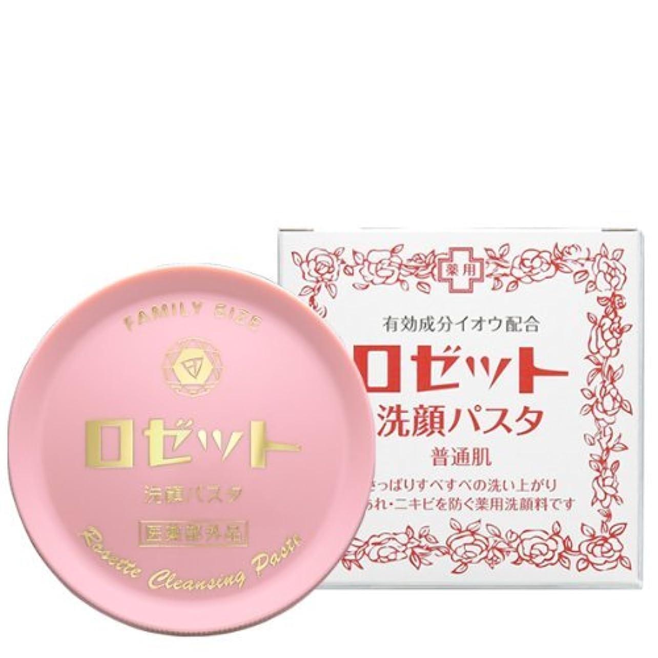成人期密歌うロゼット 洗顔パスタ 普通肌 90g (医薬部外品)