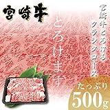 宮崎牛 クラシタロース 簡易包装仕様 500g