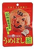 味覚糖 うめぼし組 40g×10袋