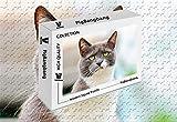 PigBangbang 知的ゲーム フォトモザイクジグソーパズル 木製 箱入り 有名な絵画 - 猫 驚異的に不快 - 1500ピース ジグソーパズル (34.4 X 22.6インチ)