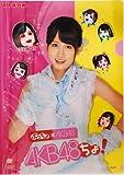 AKB48 ぷっちょ×AKB48 AKBちょ! まえだっちょクリアファイル
