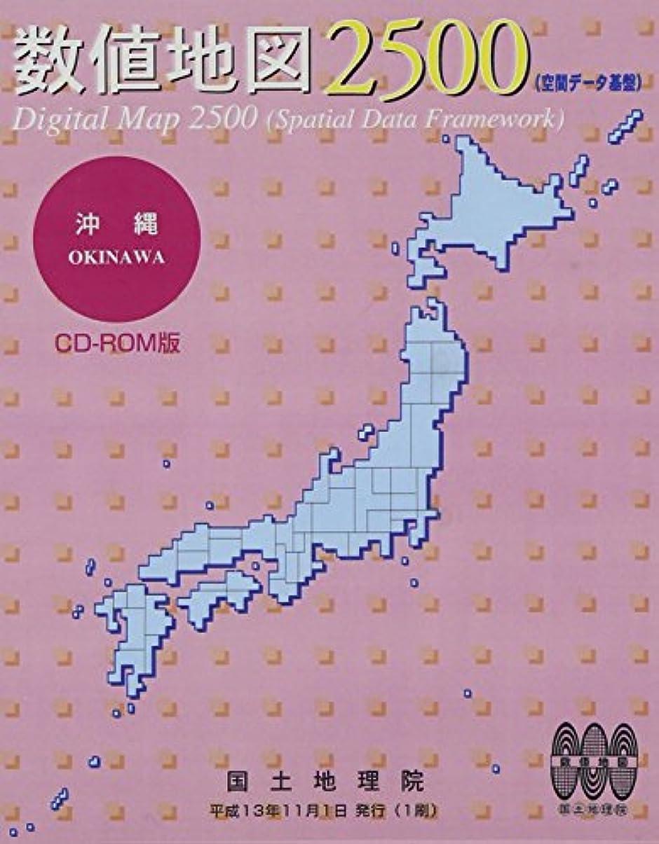 水平翻訳するいう数値地図 2500 (空間データ基盤) 沖縄