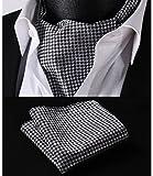 ヒスデン(HISDERN) メンズ タータンチェック ジャカール 手結び アスコットタイ セット ブラック / ホワイト