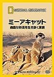 DVD ミーアキャット 過酷な砂漠を生き抜く家族
