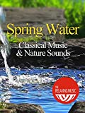 Spring Water Classical Music and Nature Sounds - The Relaxing Music