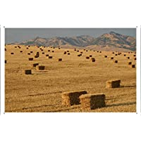 フィールド上にわら俵のティンサイン 金属看板 ポスター / Tin Sign Metal Poster of Bales Of Straw On The Field