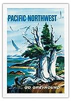 太平洋岸北西部 - グレイハウンド - ビンテージな世界旅行のポスター によって作成された S.フレミング c.1958 - 美しいポスターアート