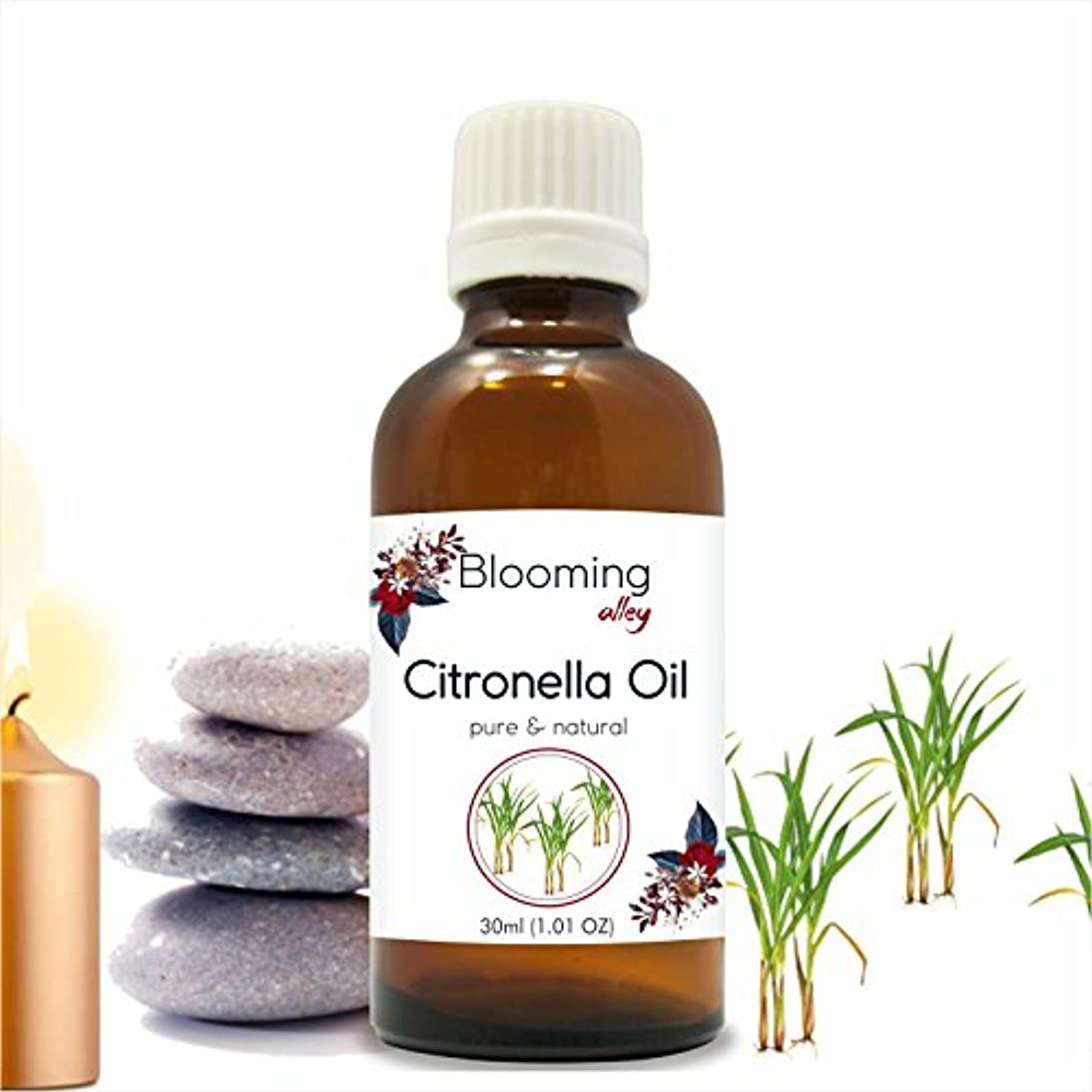 火山有能な流行しているCitronella Oil (Cymbopogon Nardus) Essential Oil 30 ml or 1.0 Fl Oz by Blooming Alley