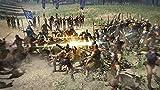 「ブレイドストーム 百年戦争&ナイトメア」の関連画像