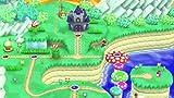 New スーパーマリオブラザーズ U - Wii U_05