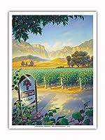 マデラ・ヴィンヤード・ワイン・トレイル - カリフォルニアワインカントリーアート によって作成された カーン・エリクソン - アートポスター - 23cm x 31cm