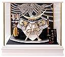 五月人形 兜ケース飾り ホワイトゴールド伊達兜 間口48×奥行33×高さ42cm ホワイトケース G2604Z