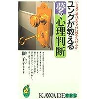 ユングが教える夢の心理判断―いま見た夢はあなたに何を告げるか (KAWADE夢新書)