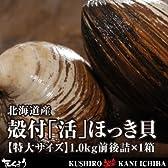 北海道産・殻付「活」ほっき貝【特大サイズ】1.0kg前後詰×1箱