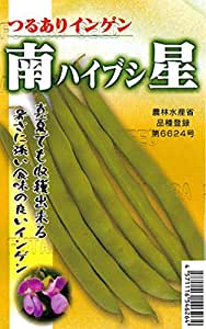フタバ種苗 南星(ハイブシ) 莢インゲン 種・小袋詰(20ml)