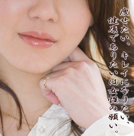 JAS有機栽培米 米ぬか 「加賀美人」 (微粉) 600g メール便