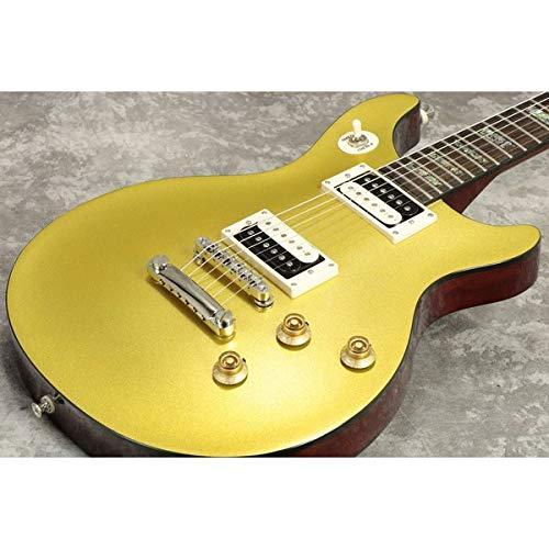 Epiphone/TAK Matsumoto DC Standard Gold Top エピフォン