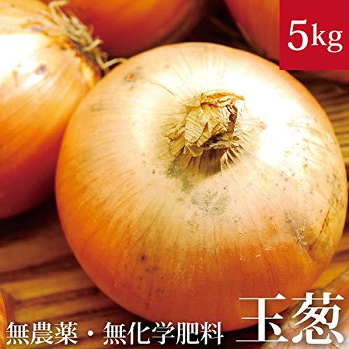 北海道 玉ねぎ 5kg 無農薬・無化学肥料