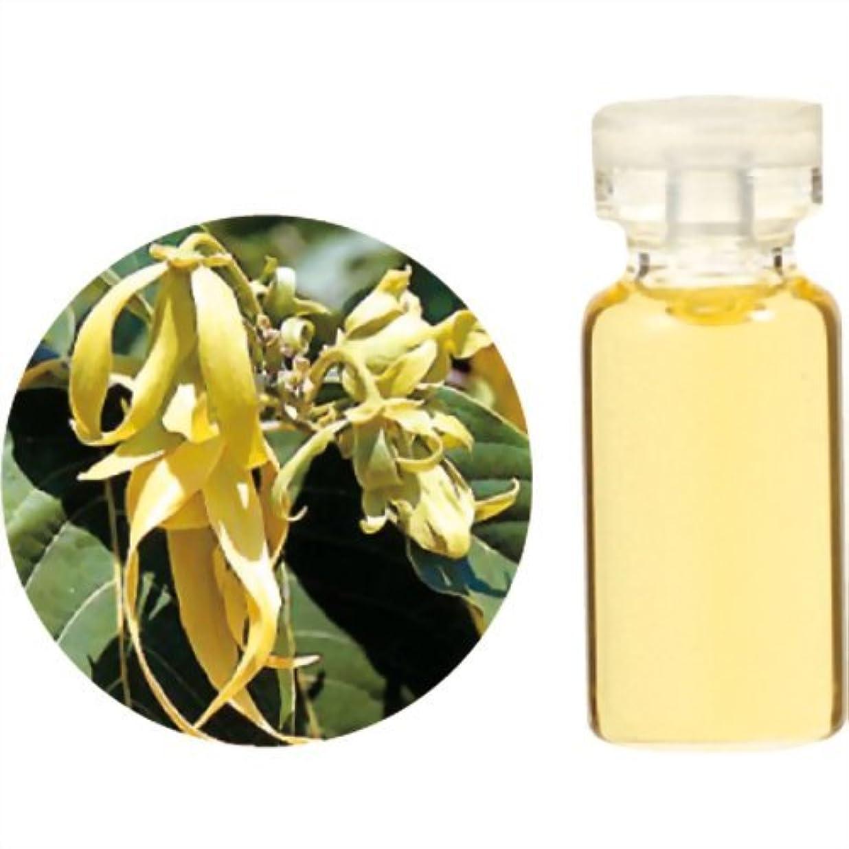 懐疑的第レジ生活の木 Herbal Life イランイラン?エクストラ 10ml