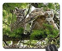 マウスパッド、EAGLE OWL FAMILYマウスパッド、マウスパッド(Birds Mouse Pad)