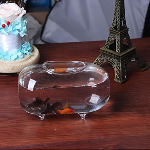 ガラス魚タンク 金魚鉢 水槽 楕円形 部屋、オフィス、リビング、寝室 装飾 贈り物