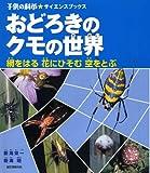 おどろきのクモの世界―網をはる花にひそむ空をとぶ (子供の科学サイエンスブックス)