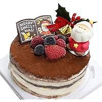 ジェラート専門店「Canaletto(キャナレット)」クリーミーティラミスジェラートケーキ(ジェラートケーキ・アイスケーキ)【お届け:12月23日】≪クリスマスケーキ予約・2018≫