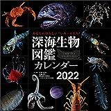 情報印刷 深海生物図鑑 2022年 カレンダー 壁掛け CL22-0803 白