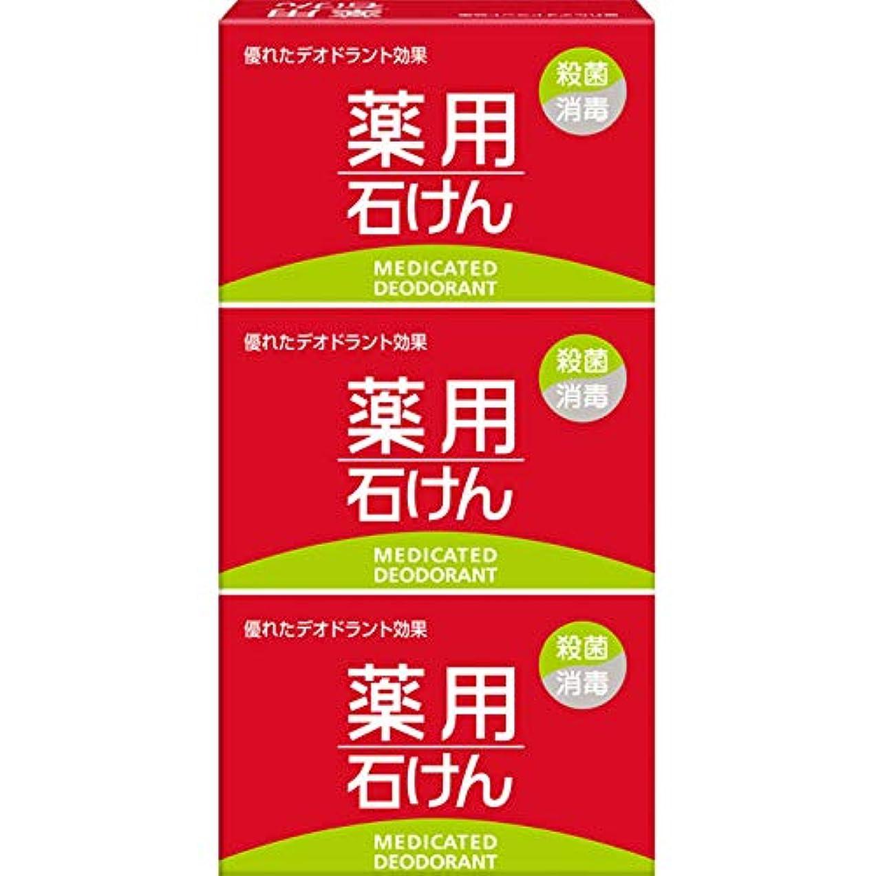 中毒一貫した自治的薬用石けん 100g×3個 (医薬部外品)