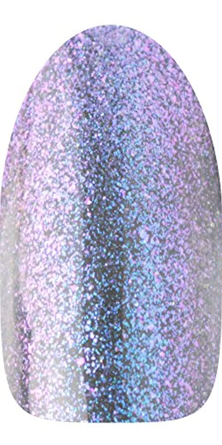 機械的に一貫性のないチョップsacra カラージェル ドレスアップラメシリーズ No.D01 タージマハル