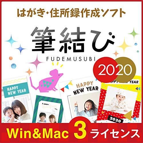 【最新】 年賀状 ソフト 2020  年賀状作成 はがき おしゃれ デジカメ 筆結び|Mac/Win対応|オンラインコード版
