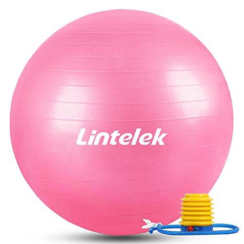 Lintelek バランスボール ヨガボール フィットネスボール 65cm 滑り止め チューブ付 アンチバースト 運動 椅子 ジム/ホーム/オフィスなどに適用 高品質日本語説明付け (ピンク)