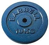 トータルフィットネス(TotalFitness) ダンベルプレート 10kg 2枚 STW151