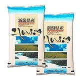 【新米】新潟県産 白米 こしいぶき 10kg 平成29年産