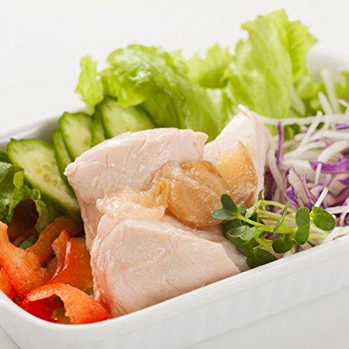 常温で260日 鶏肉本体の味と食感 サラダチキン プレーン 100g 6パック (長ネギ&生姜)
