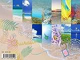2020うみまーる卓上ムーンカレンダー `ちゅら海−Churaumi' (月の満ち欠け)