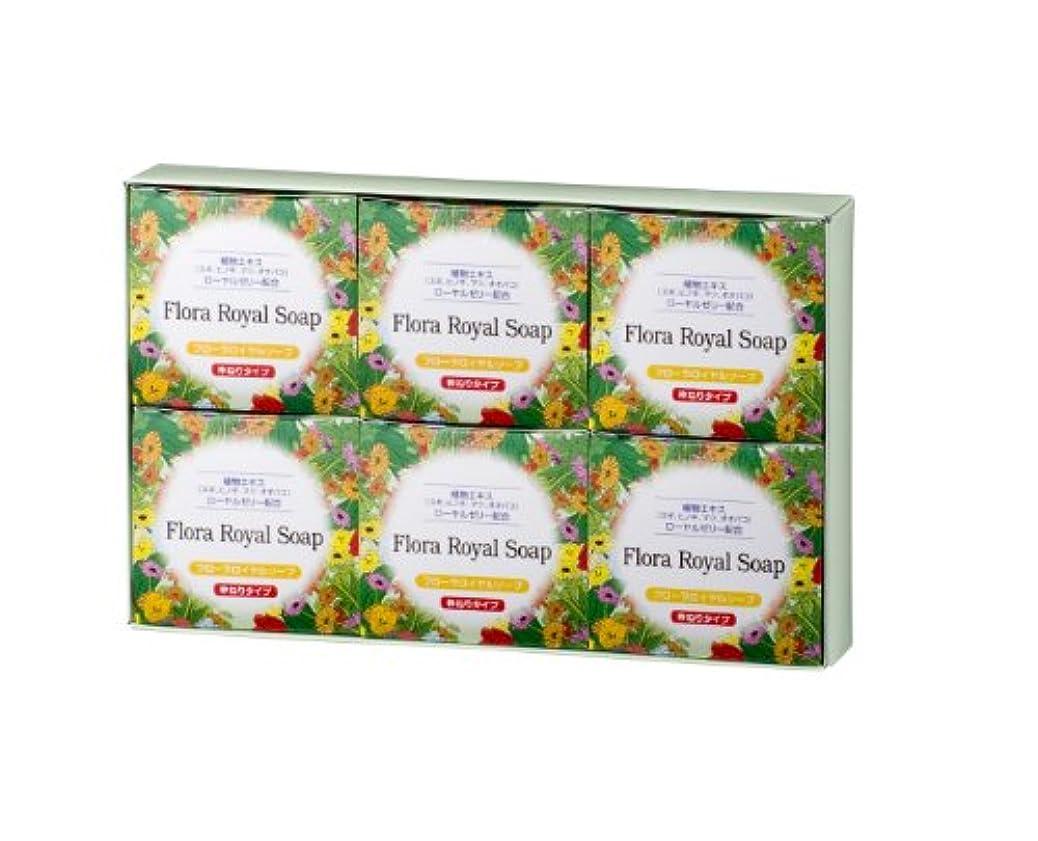 きしむボーダーブラウンフローラ 植物エキスボディソープ(無香料) フローラロイヤルソープ  6個セット