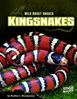 Kingsnakes (Wild About Snakes)