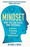 Mindset: How You Can Fulfill Your Potential
