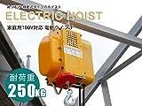 電動ウインチ 強力小型ホイスト 家庭用100V対応 50Hz 最大能力250kg 出張先や現場ですぐに使える移動式 吊り下げタイプ 60日安心保証付