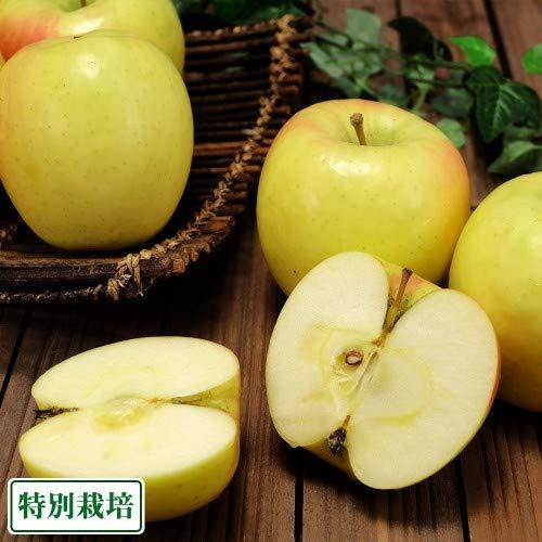 ぐんま名月 秀品 5kg箱 特別栽培 (青森県 阿部農園) りんご 産地直送 ふるさと21