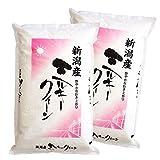 新潟県産 ミルキークイーン 28年産 4kg (2kg 2袋) 白米 【精米】