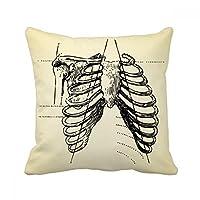 肋骨の骨の人間の骨格のスケッチ スクエアな枕を挿入してクッションカバーの家のソファの装飾贈り物 50cm x 50cm