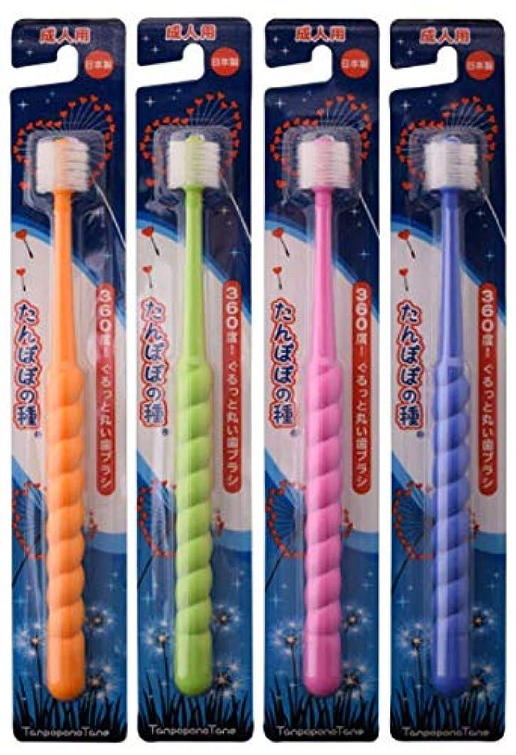 条件付きショルダー味わうたんぽぽの種 360度ぐるっと丸い歯ブラシ 極細毛 (成人用 4本セット)