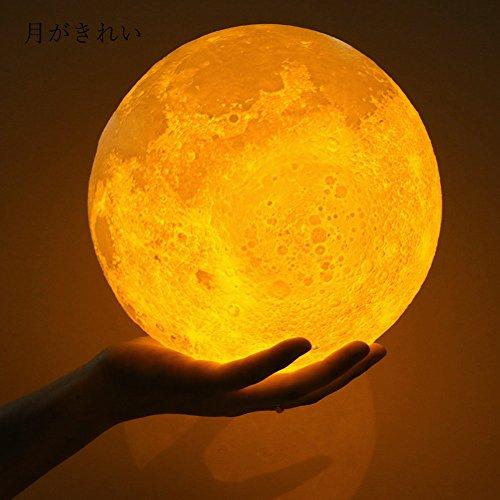間接照明 月のランプ ボール型LEDライト USB充電式 3Dプリント 夜間...
