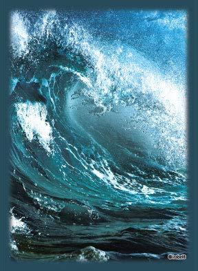 ブロッコリーハイブリッドスリーブ 「猛る波濤」