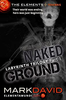 Labyrinth 1: Naked Ground: Part 1 of the Labyrinth trilogy (The Elements) by [David, Mark]
