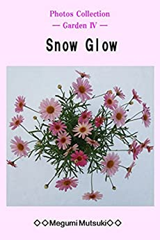 [Megumi Mutsuki]のPhotos Collection ― Garden Ⅳ ― Snow Glow (English Edition)