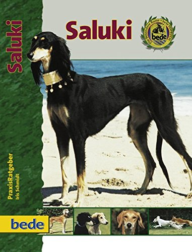 PraxisRatgeber Saluki