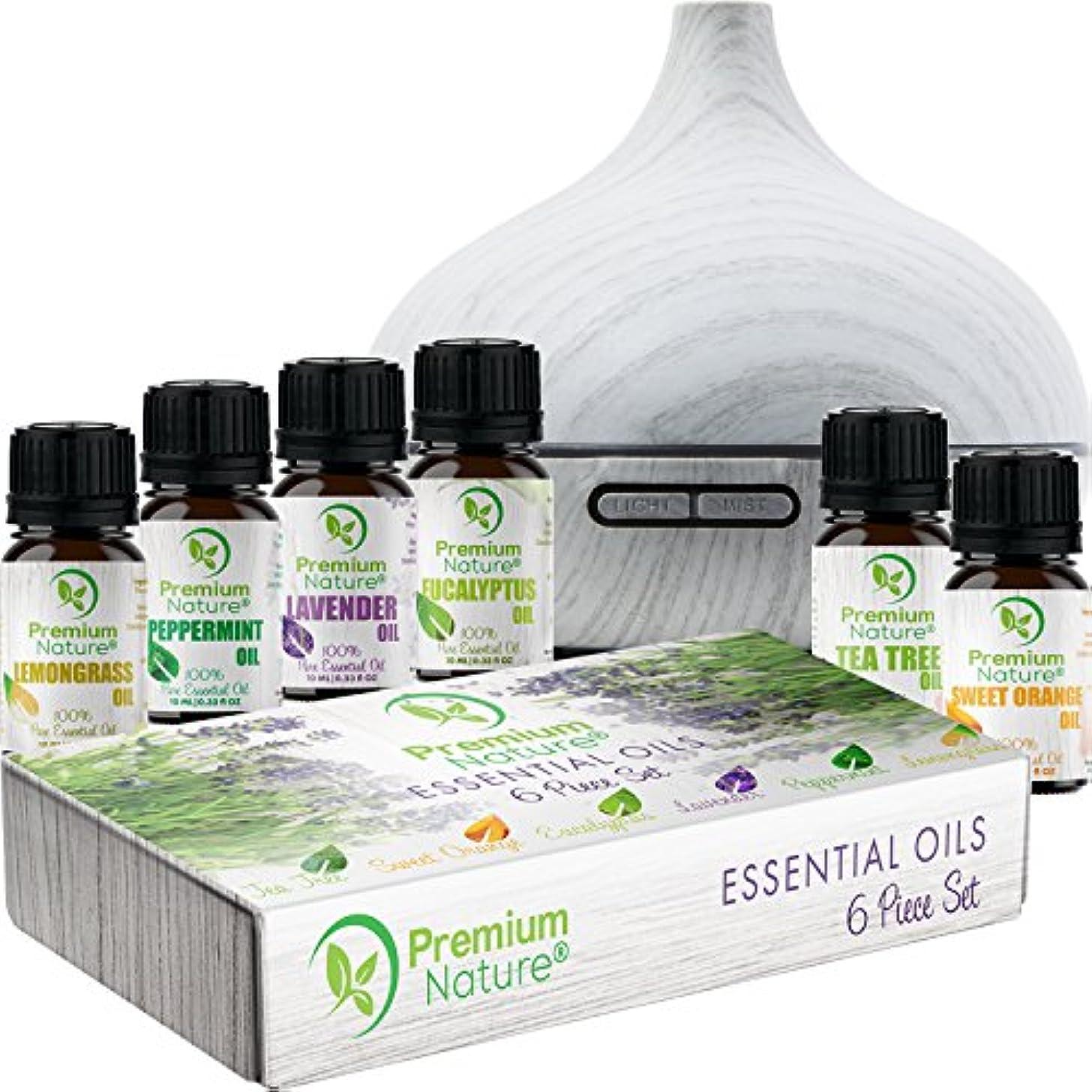 純粋にお手伝いさんオーバーフローAromatherapy Essential Oil & Diffuser Gift Set – 250 mlタンク& Top 6 Oils – Therapeutic Grade – ペパーミント、ティーツリー、レモングラス...